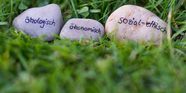 Steine mit Beschriftung der Nachhaltigkeitsziele