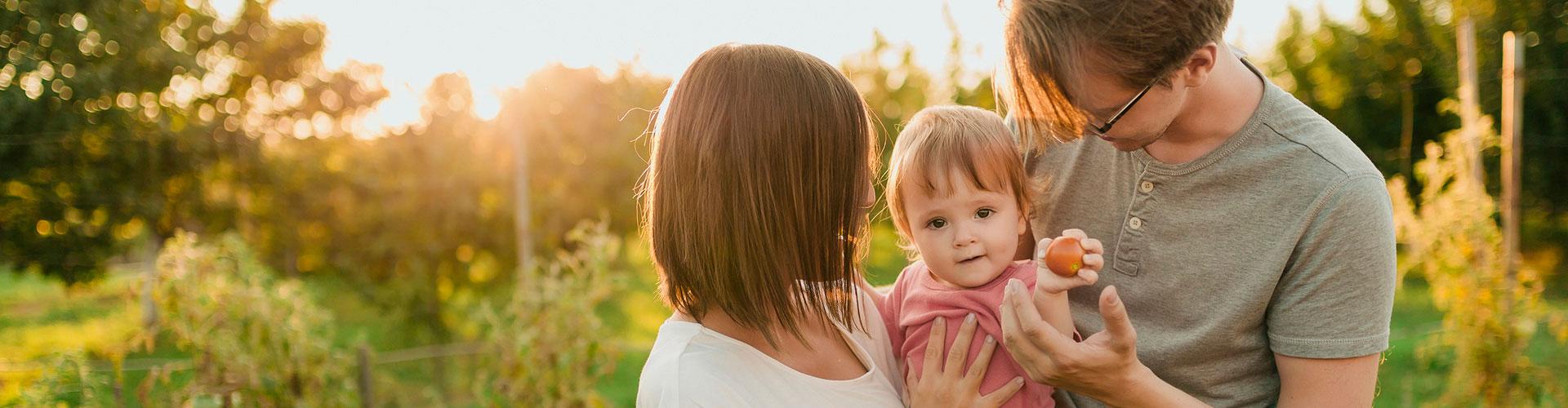 Eine junge Familie mit kleinem Kind auf einer Wiese beim Sonnenuntergang