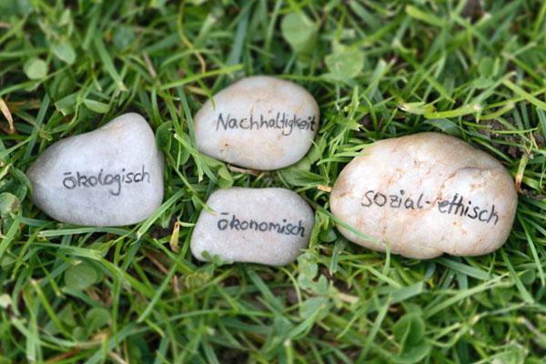 Beschriftete Steine auf einer Wiese, auf denen die Wörter Nachhaltigkeit, ökonomisch, ökologisch und sozial-ethisch stehen