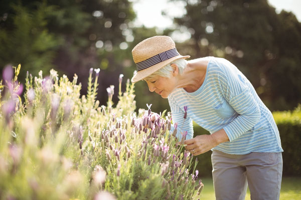 Eine ältere Dame beim Gärtnern